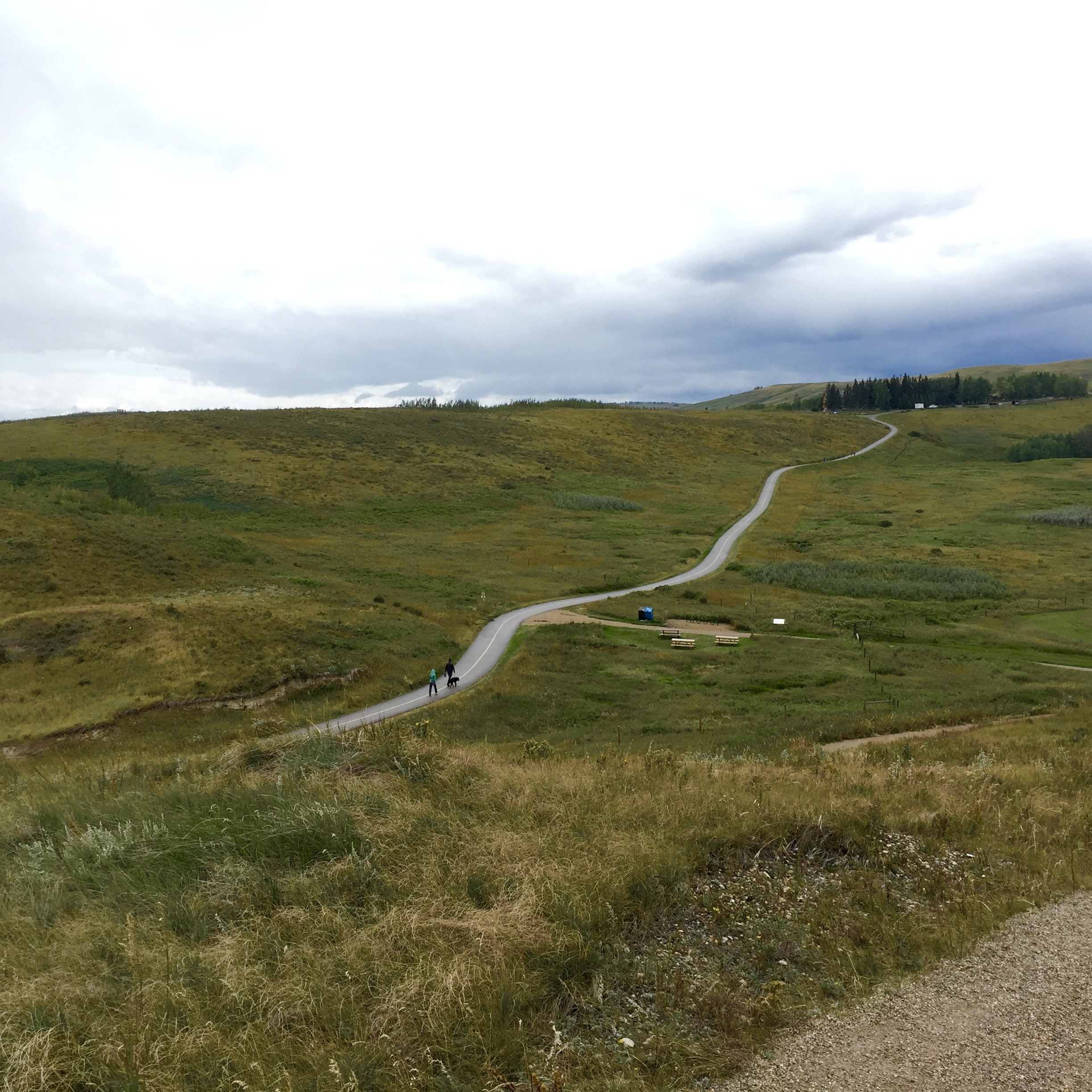 5 Hikes Near Calgary That Aren't in the Rockies